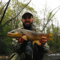 Best Trout Fishing In Maryland