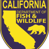Department Of Fish And Wildlife Jobs